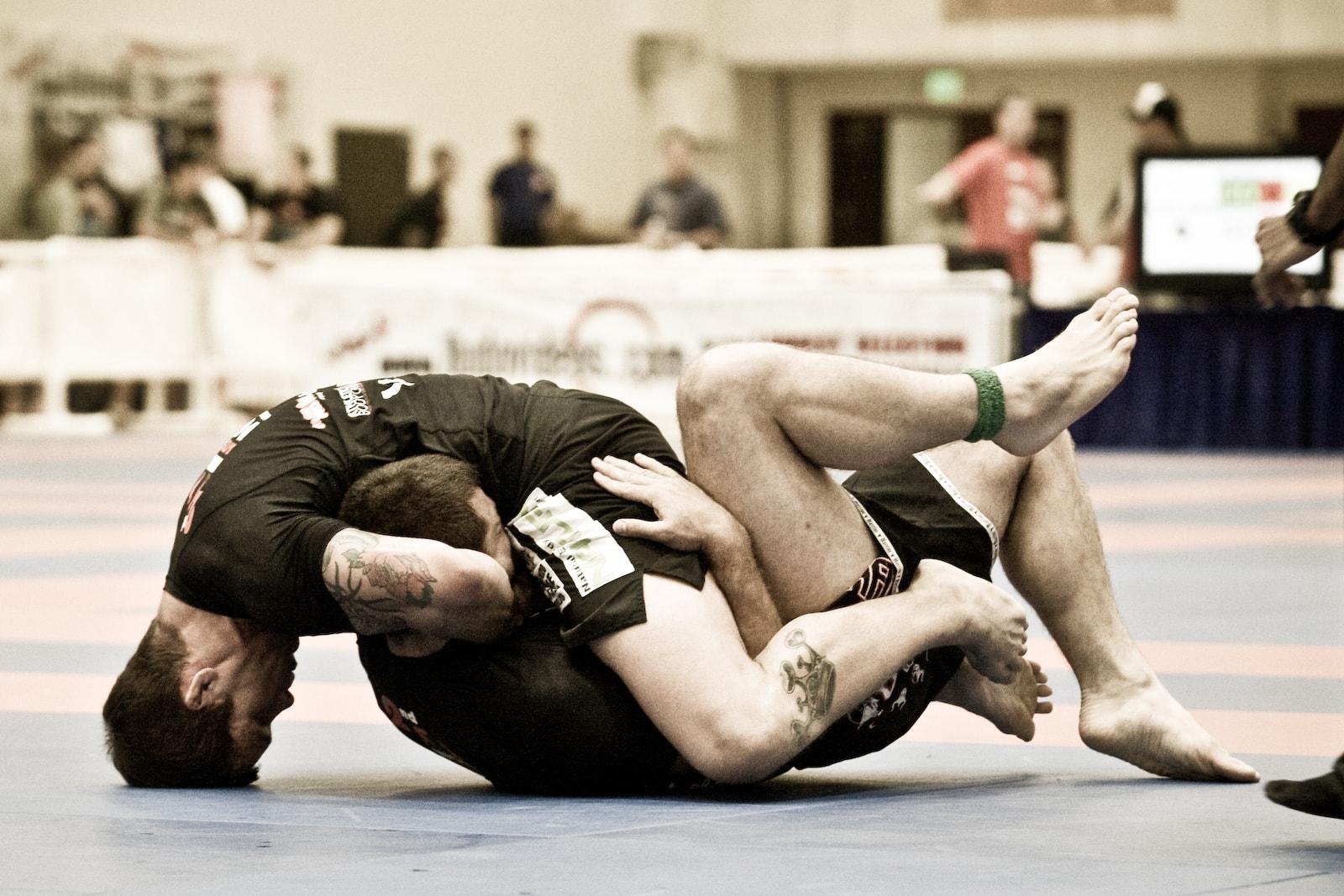La Guía del Brazilian Jiu-Jitsu - Popularidad