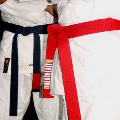 La Guía del Brazilian Jiu-Jitsu - Cinturón