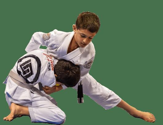 Guia BJJ Jiu-Jitsu